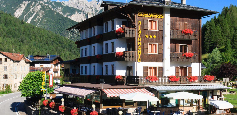 Photographie de Hotel Edelweiss