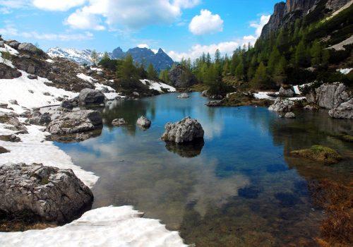 Archive du Parc des Dolomites Frioulanes: Photographie de Romeo Pignat