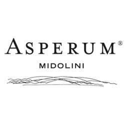 acetaia-midolini-logo