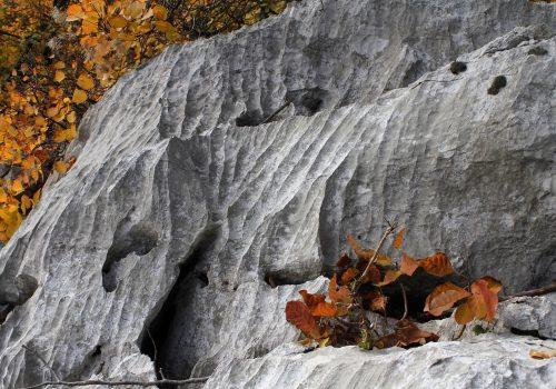 Riserva naturale dei laghi di Doberdò e Pietrarossa | Ph. Matteo De Luca
