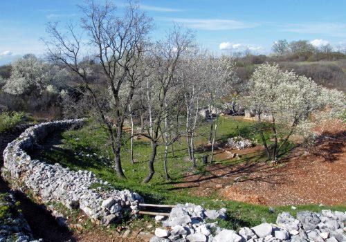Dolina del XV Bersaglieri | Ph. Pro Loco Fogliano Redipuglia