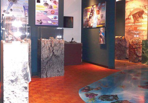Photographie de la Mostra Geopaolontologica à Pontebba