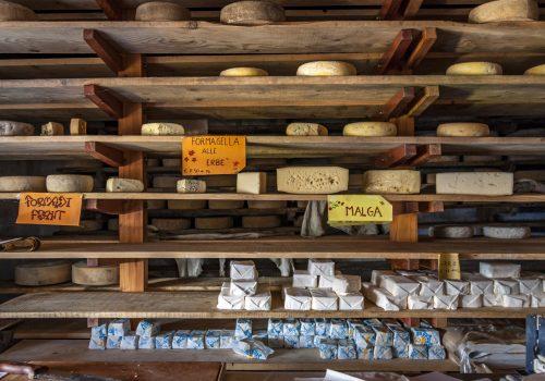 Malghe | Photographie des Archives A vous le Frioul, Ph. Massimo Sangoi