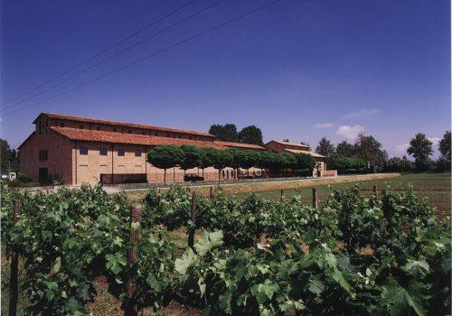 Azienda Agricola Ca'Tullio | Ph. Ca'Tullio
