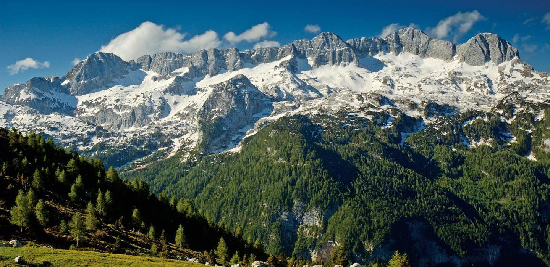 Monte Canin | Ph. Parco Prealpi Giulie